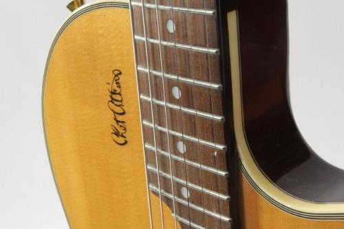 Epiphone Chat Atkins